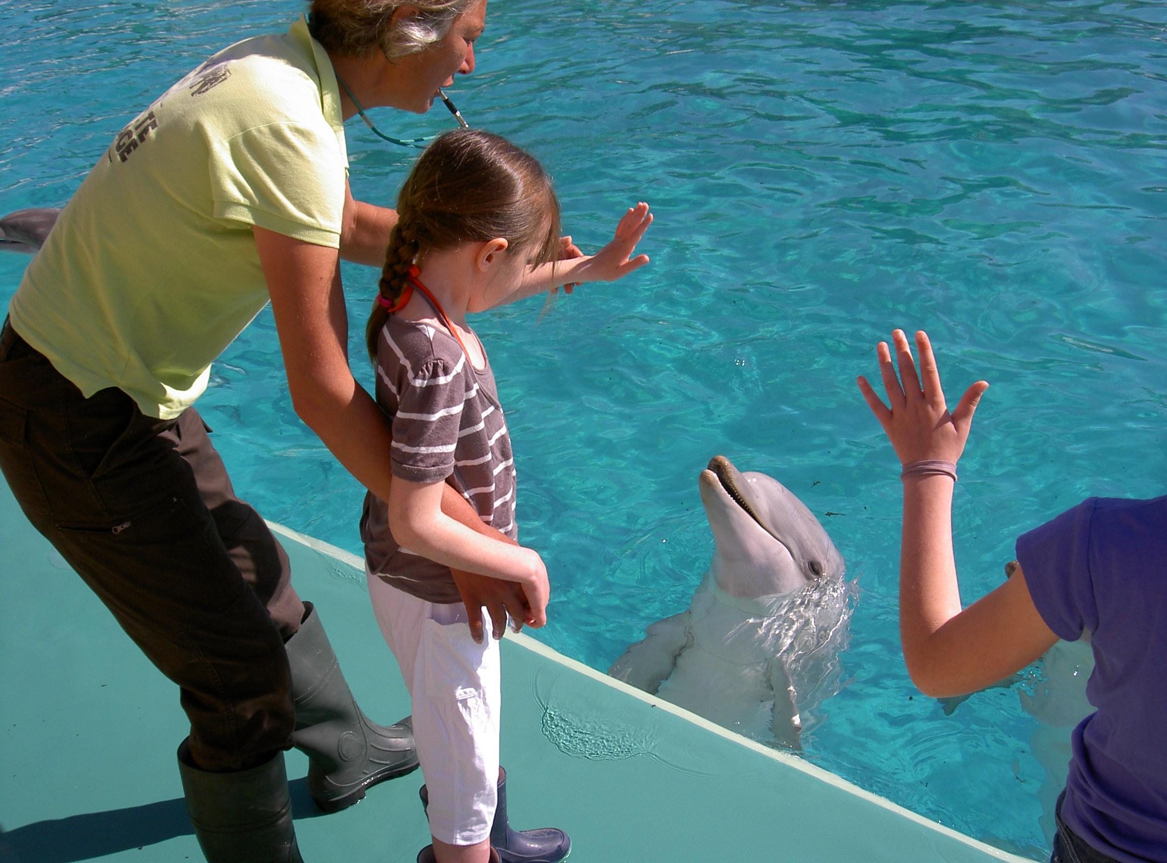 Margaux et son copain le dauphin